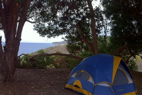 Full_elcapitanstatebeach_campsite_2012.01.15