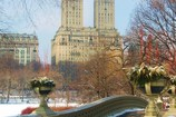 Main_thumb_bow_bridge__central_park