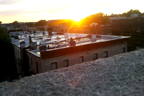 Full_06.13.11_sunset