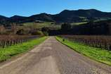 Main_thumb_road_to_alma_rosa.r
