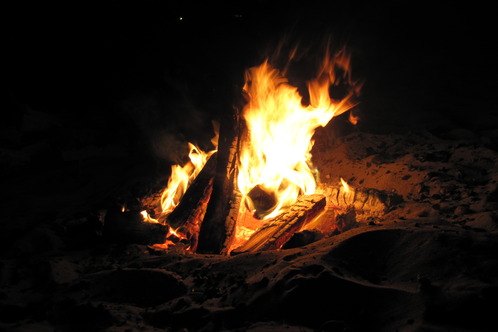 Full_aptosbonfire