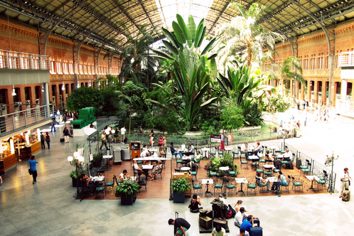 Full_atocha_station_garden