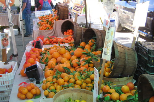 Full_citrus_hollwood_farmers_market