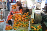 Main_thumb_citrus_hollwood_farmers_market