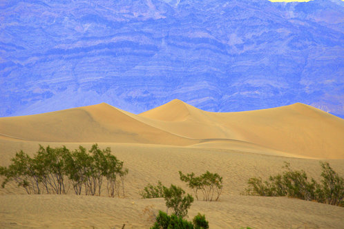 Full_1337643214_1337643204_sand_dunes_in_death_valley_6-15-2011_4-48-07_am